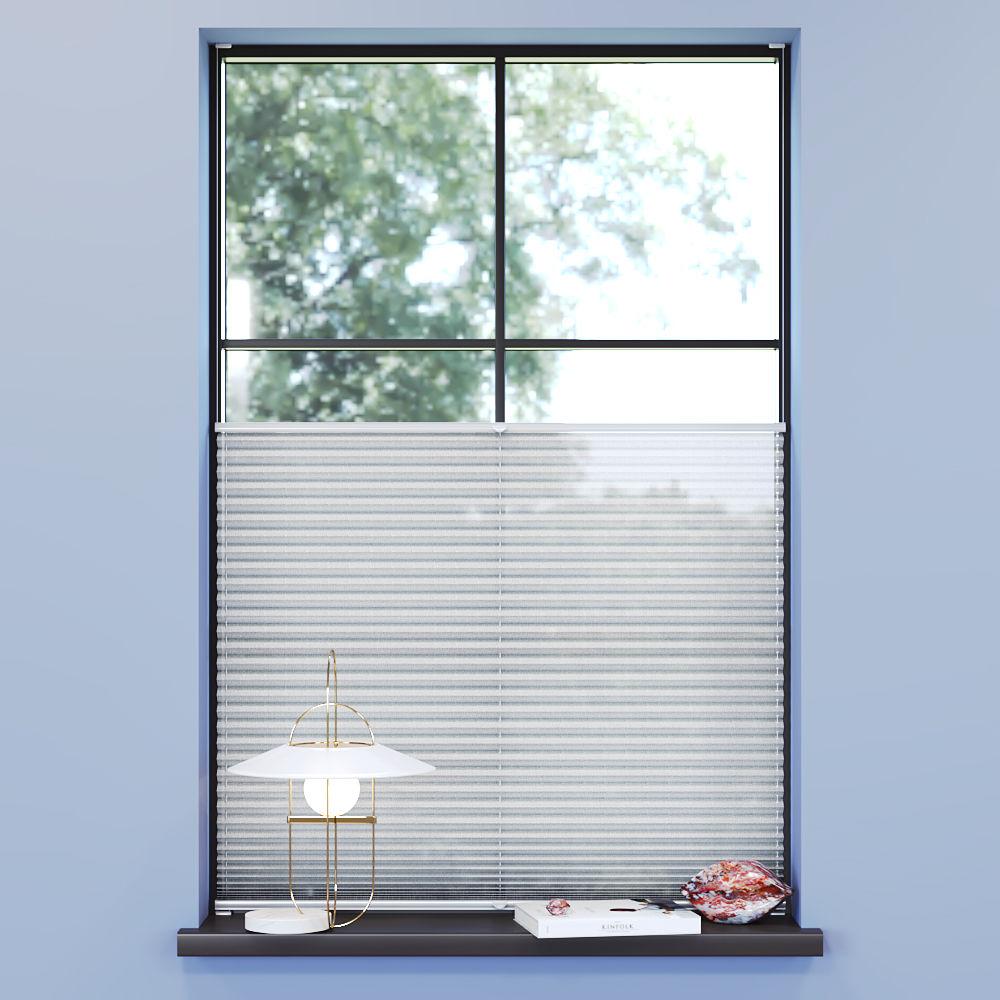 Transparent Premium Pleated Blind, Ines White