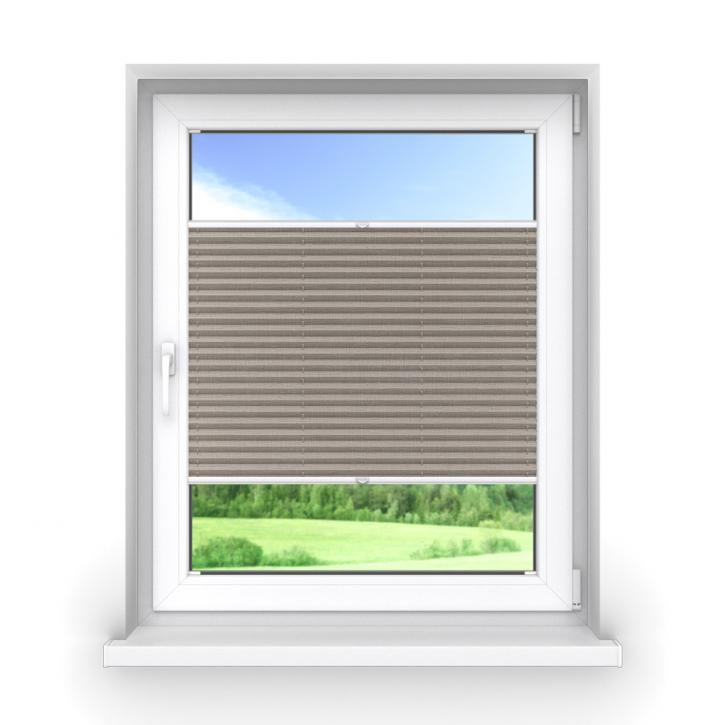 Transparent Premium Pleated Blind