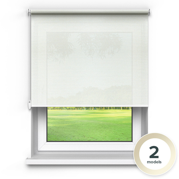 Transparent Premium Roller Blind