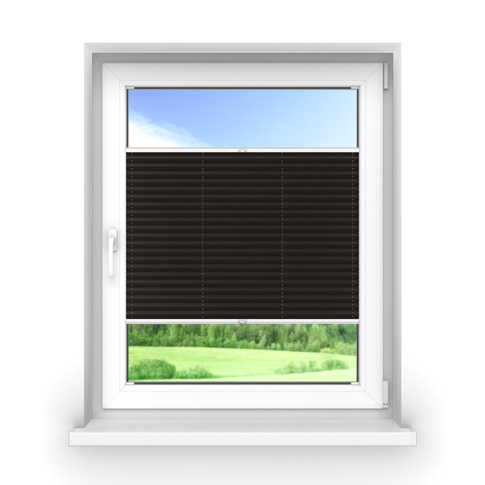 Blackout Premium Pleated Blind, Lily Raven