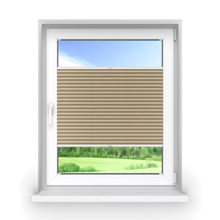 Darkening Premium Pleated Blind